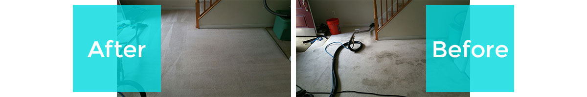Before/After Rug Cleaning in Las Colinas